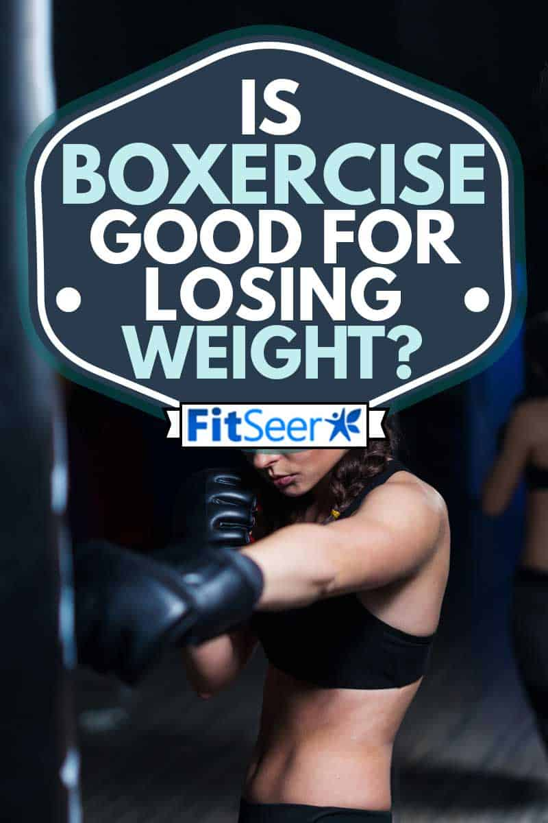Cute fighter boxer fit girl wearing boxing gloves in training with heavy punching bag in gym, Is Boxercise Good For Losing Weight?