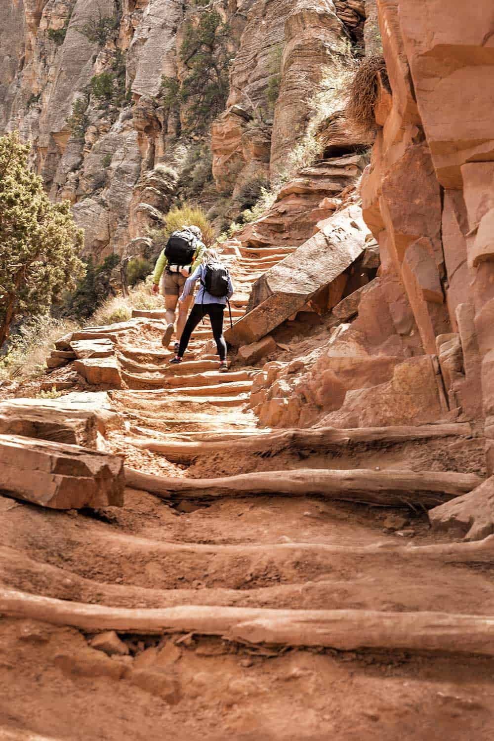 Father and daughter climb up a long staircase while hiking through the Grand Canyon