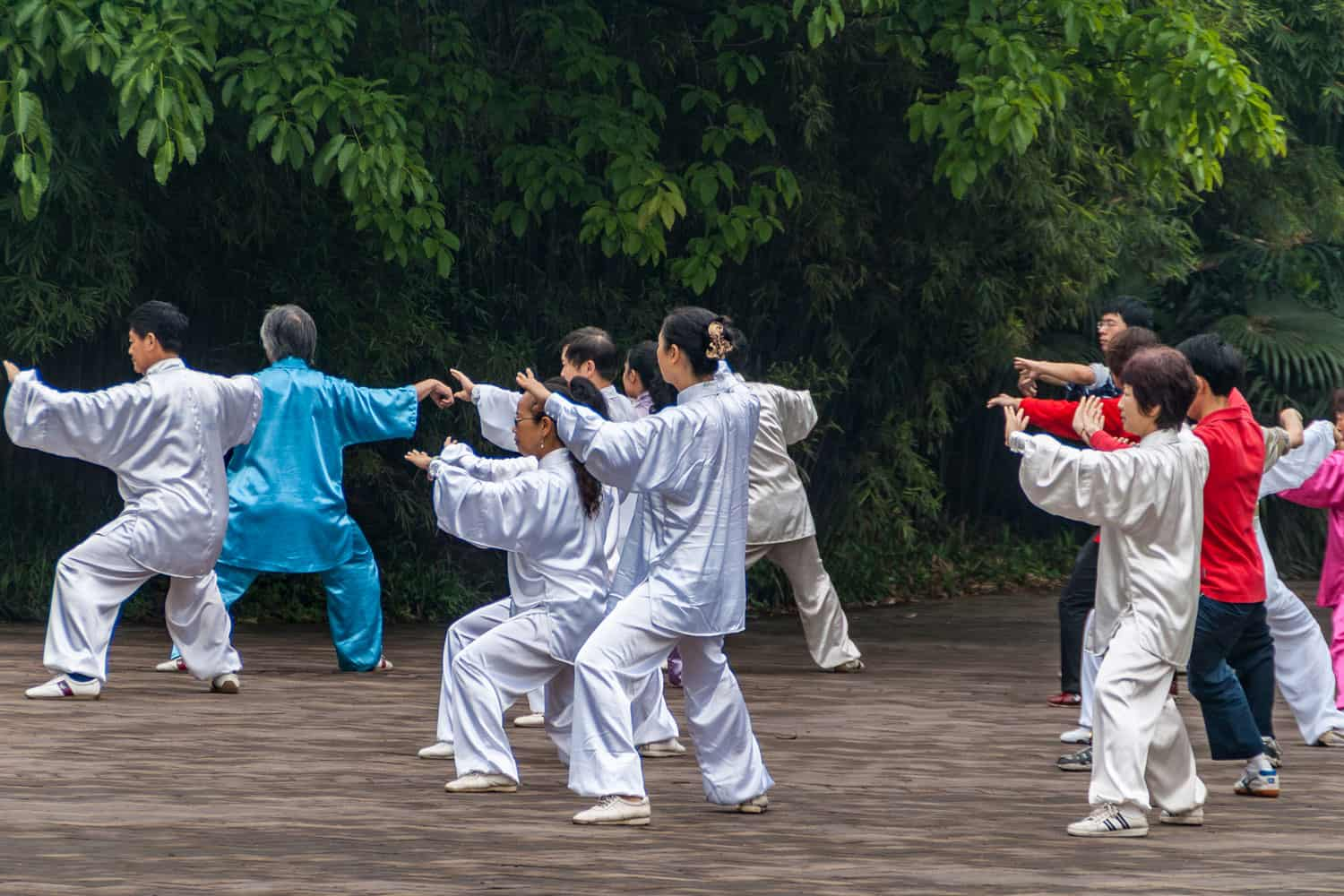 Group of people in silver, blue and red silk outfits practicing synchronized Tai Chi exercises in front of green foliage wall
