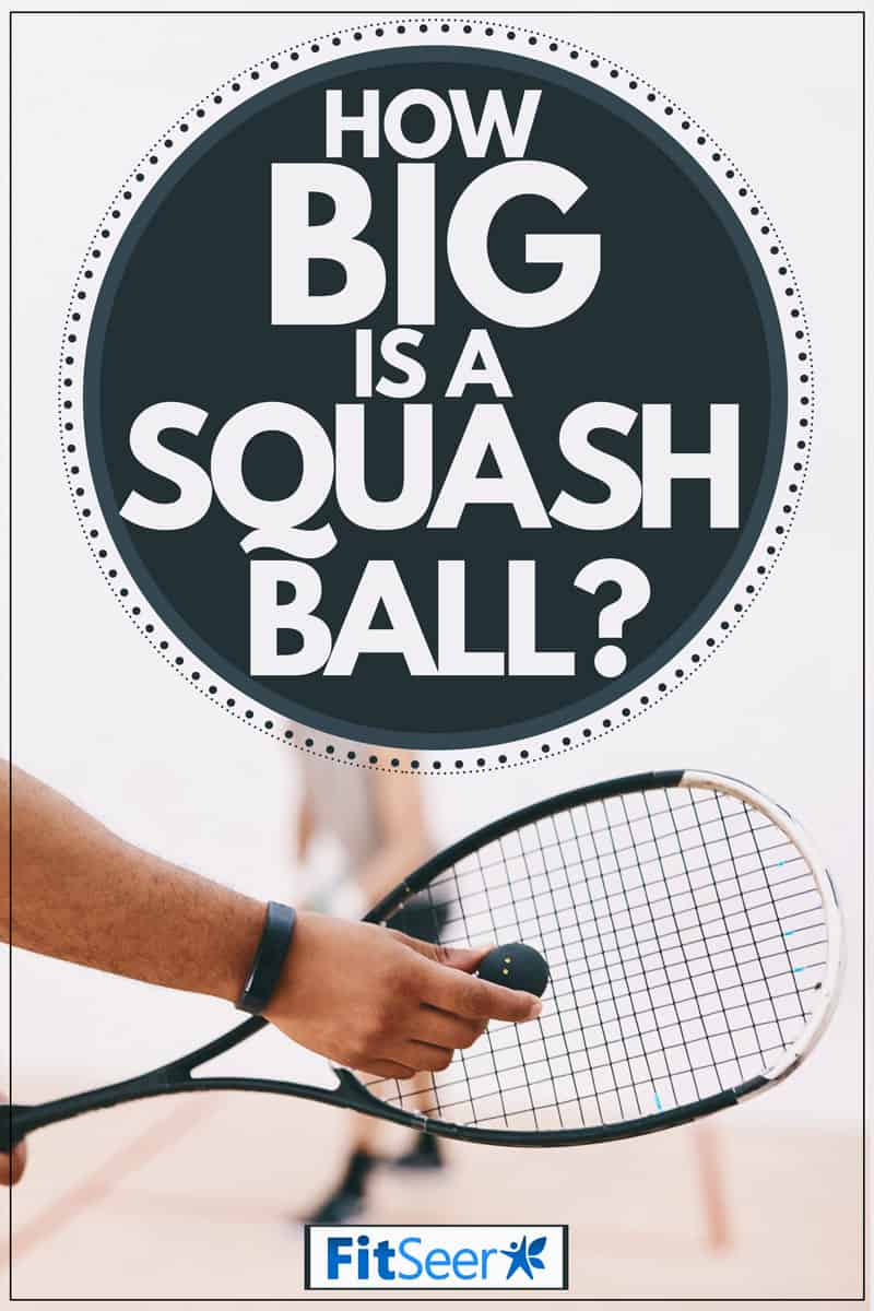 A squash ball player holding his racket and the ball getting ready to serve, How Big Is A Squash Ball?