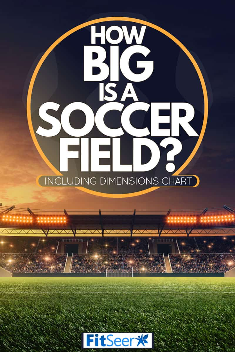 A huge soccer field with huge stadium light and bleachers filled with people, How Big is a Soccer Field? [Inc. Dimensions Chart]