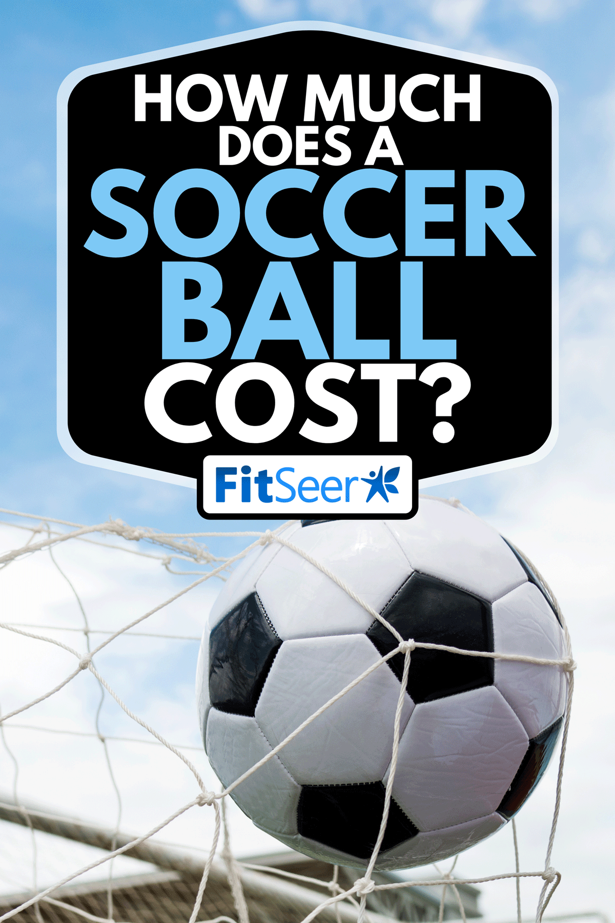 A soccer ball hitting the net, How Much Does a Soccer Ball Cost?