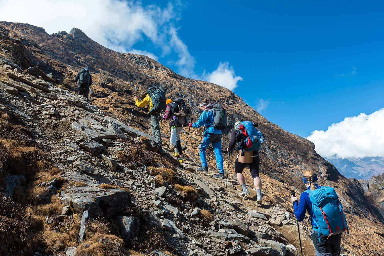 Mixed group of athletes male and female young and mature walking up on steep mountain trail with backpacks and trekking poles