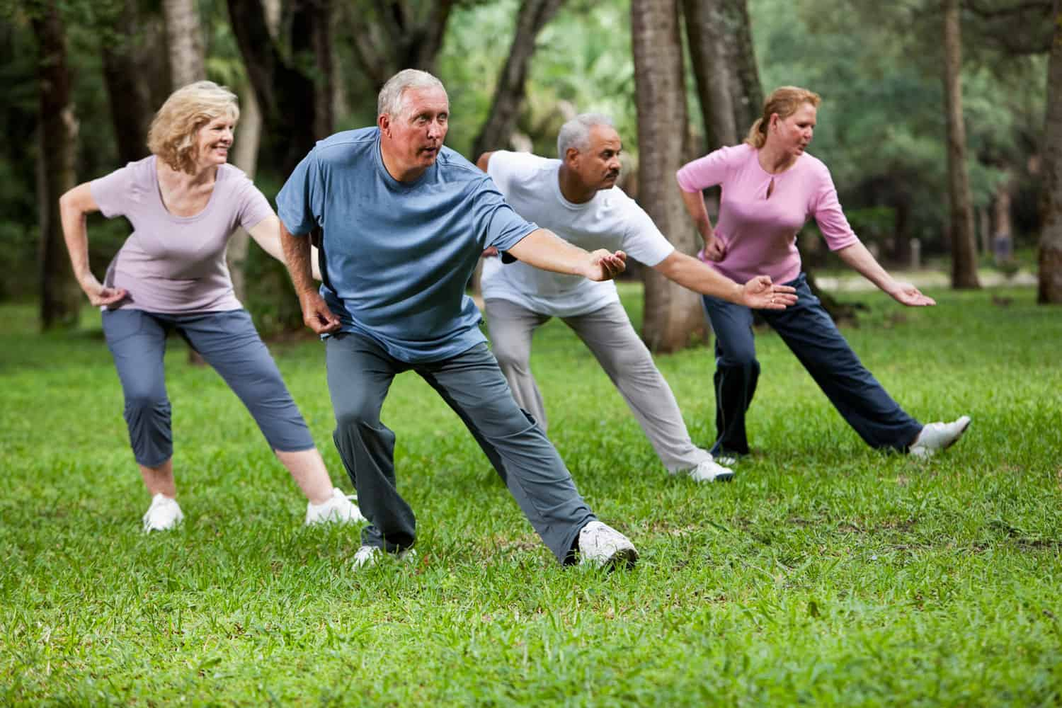 Multi-ethnic group of adults practicing Tai Chi in park