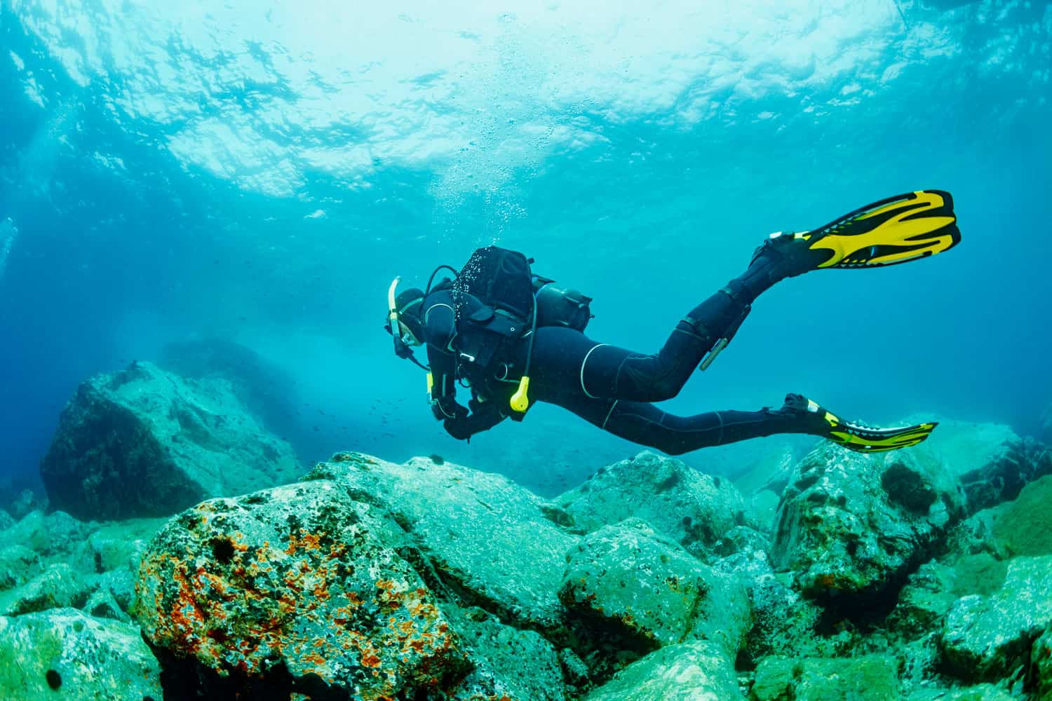 A scuba diver going down the coral reefs of the ocean