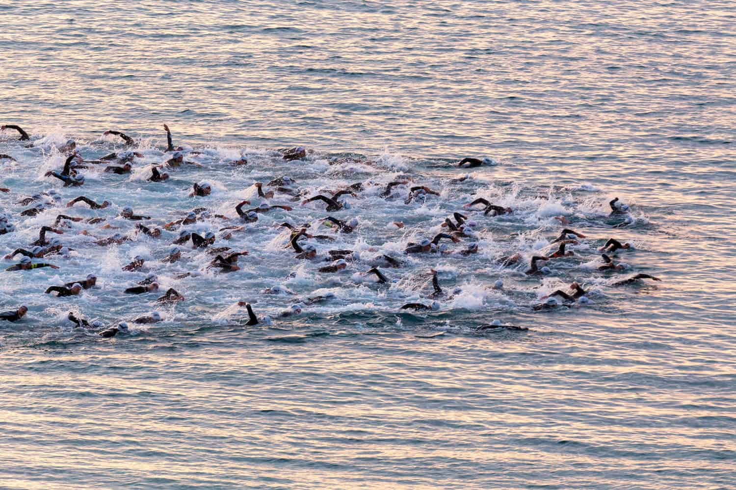 Triathletes swimming on open water competing on the Ironman triathlon