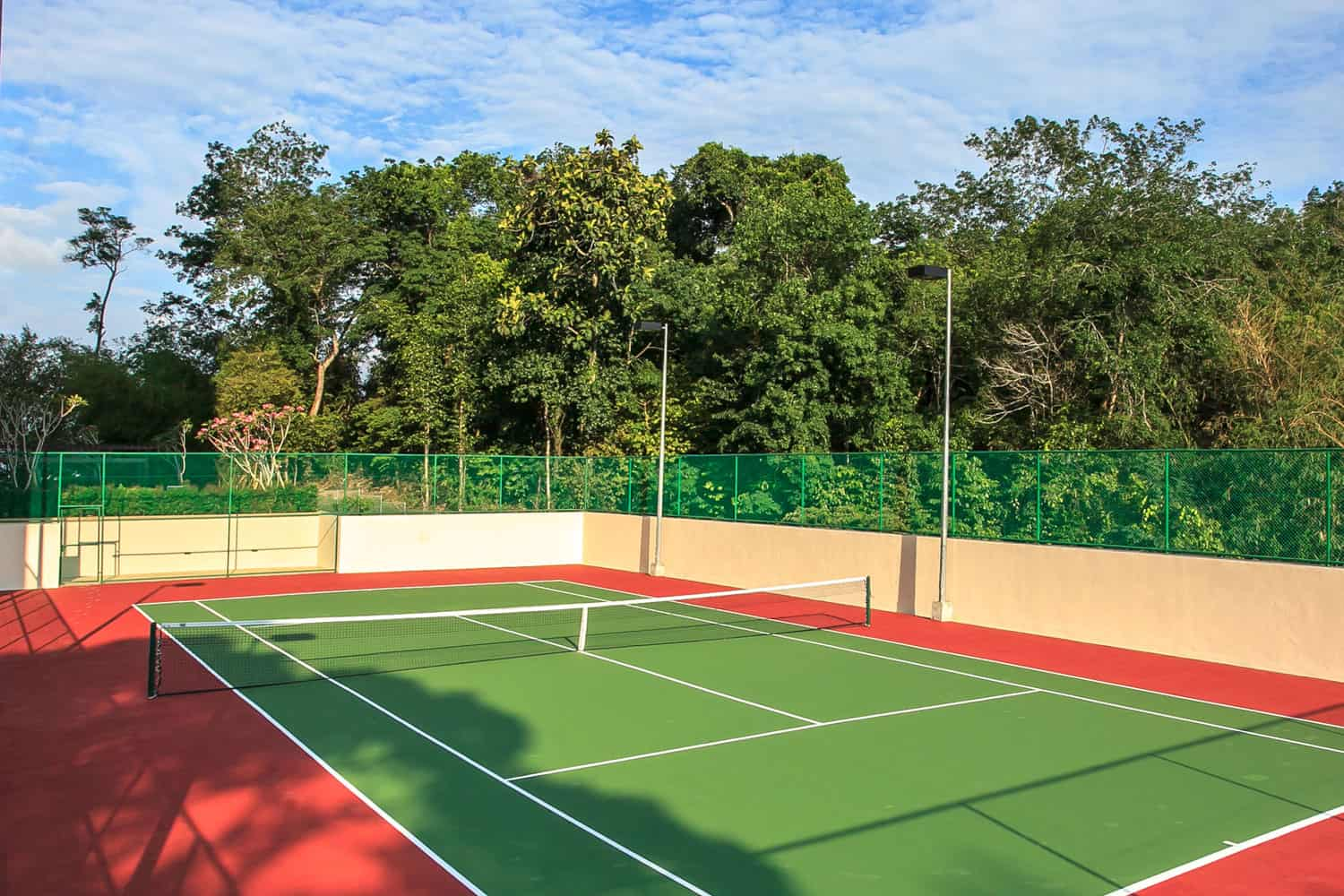 Outdoor Tennis court surrounded with trees